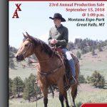 Weaver Quarter Horses; 23rd Annual Horse Sale