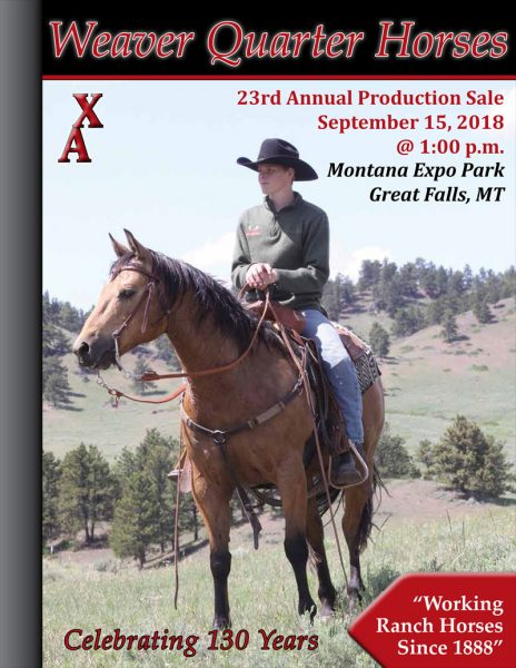 weaver quarter horse sale