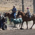 Team Roping Without Cattle