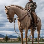 Exclusive Horsemanship Clinic with Meyer Company Ranch Horses Trainer, Tristen Baroni