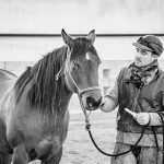 Deworming The Difficult Horse