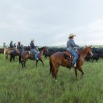 All Inclusive Horsemanship Clinic at The DX Ranch
