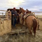 Trailer Unloading Woes