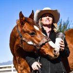 Winter Equine Trip To Arizona: What's It Really Like?