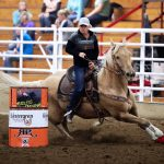 Conditioning the Barrel Horse