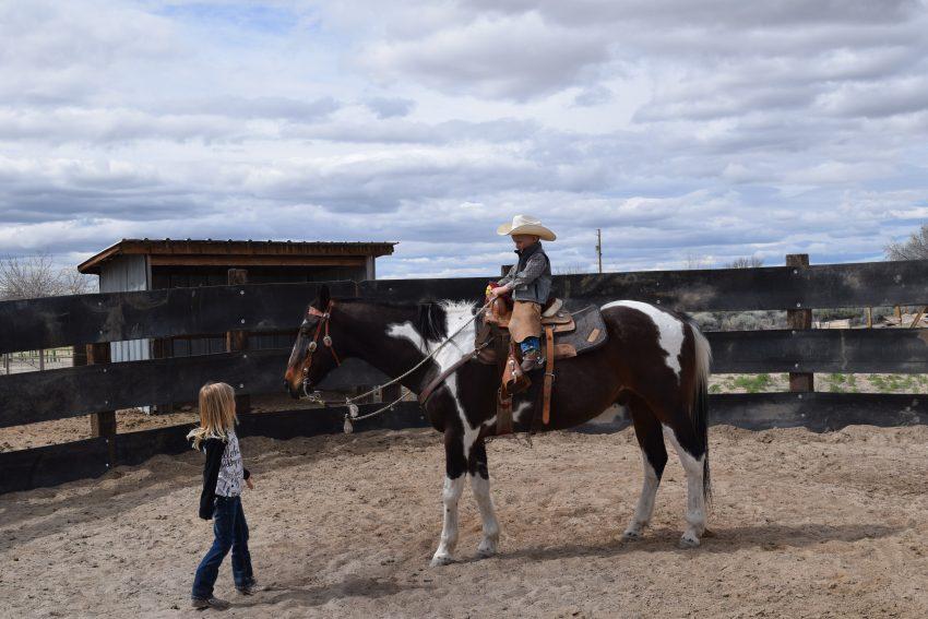 kids' horse