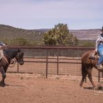 Art of the Cowgirl Horsemanship Fellowship's Journey: Part 2