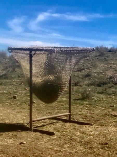 hay nets