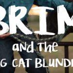 Book Release: Brim and the Big Cat Blunder