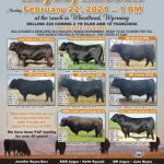 Mark Your Calendar - The 30th Annual Reyes/Russell Angus Bull Sale