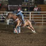 Making a Barrel Horse: Almont, ND Jackpot