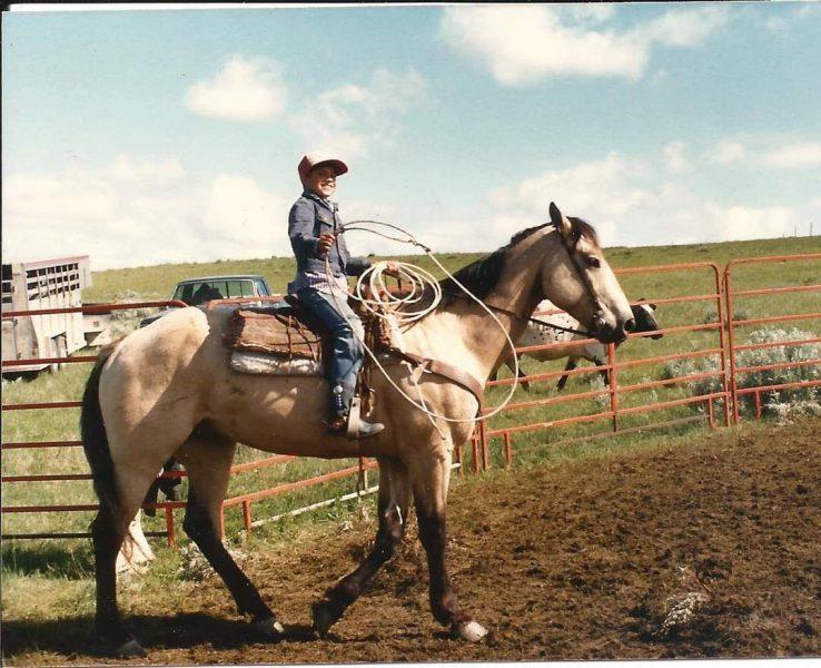 kid horse